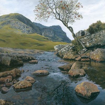 1624 Reflecting Rowan