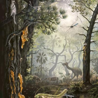 1117 Eocene Baltic Forest Scene